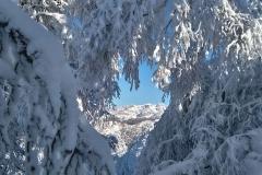 raquetas-de-nieve-asturias-2