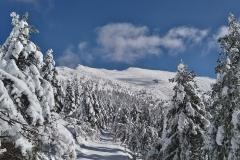 raquetas-de-nieve-asturias-4
