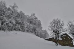 raquetas-de-nieve-ponga