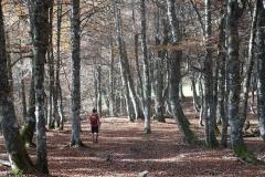 senderismo-asturias-5