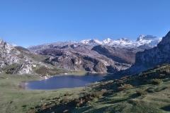 senderismo-lagos-de-covadonga-4